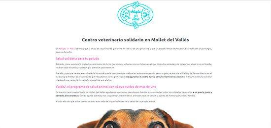 Diseño pagina web veterinario