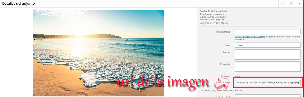 Imagen en texto WordPress